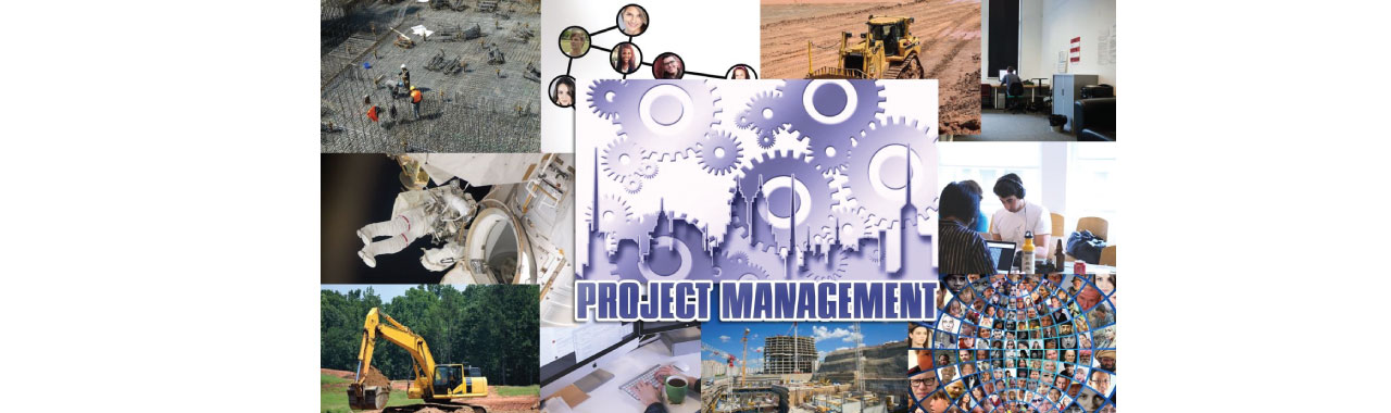 Ptrs Consulting Industry experience in Project Managment